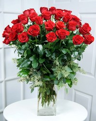 Wow!! 48 Premium Long Stem Red Roses Internet Special  from Mockingbird Florist in Dallas, TX