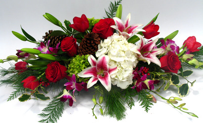Holland Holiday Centerpiece from Mockingbird Florist in Dallas, TX