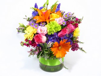 Flowers, Plants, gifts and more for any occasion