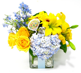 Dallas delivery of New Bby Flowers and floral arrangements.