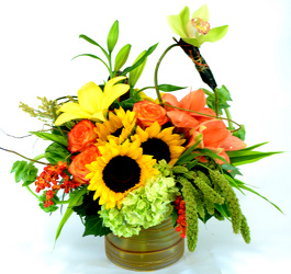 Dallas delivery of Fall Flowers, fall plants andfall Couture Designs.
