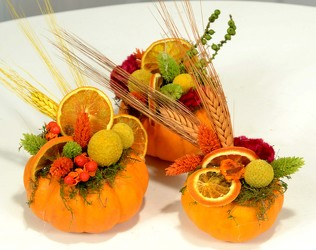 Mini Pumpkins Decorated With Dried Materials from Mockingbird Florist in Dallas, TX