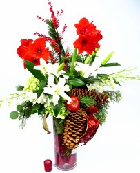 Dallas delivery of Christmas Flowers, Christmas plants, Christmas Centerpieces, and Christmas Couture Designs.