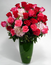 Indulgence  48 Large roses with Hydrangeas INTERNET SPECIAL from Mockingbird Florist in Dallas, TX