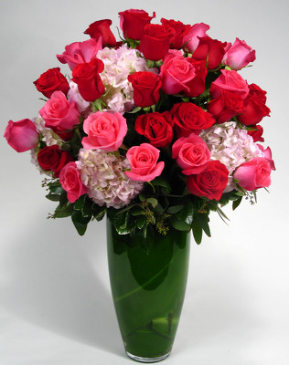 Indulgence  48 Large roses with Hydrangea Internet Special  from Mockingbird Florist in Dallas, TX