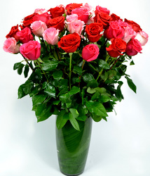 36 Assorted Pink and Red Roses from Mockingbird Florist in Dallas, TX