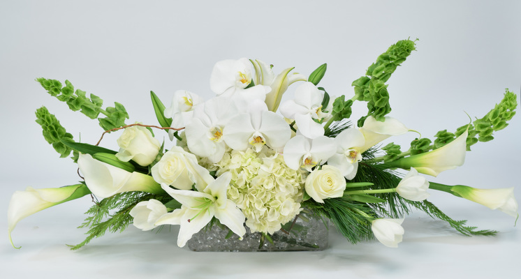 Florist in dallas best flowers roses arrangements delivery white christmas item no mc16 6 mightylinksfo